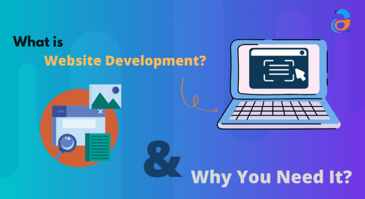 What is Website Development and Why You Need It_ (1)